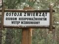 cwiczenia-terenowe-w-parku-narodowym-borow-tucholskich-14