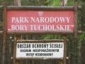 cwiczenia-terenowe-w-parku-narodowym-borow-tucholskich-2