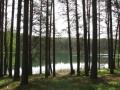 cwiczenia-terenowe-w-parku-narodowym-borow-tucholskich-3
