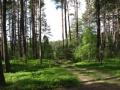 cwiczenia-terenowe-w-parku-narodowym-borow-tucholskich-4